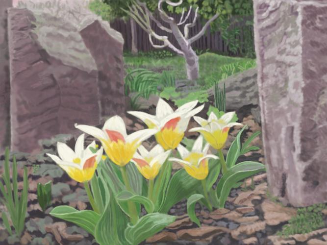 Lauren Edmond paintings
